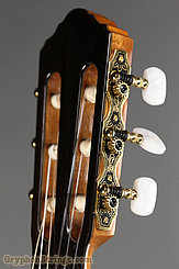 New World Guitar Player P640, Spruce top NEW Image 6
