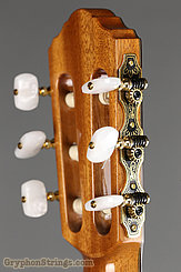 New World Guitar Player P640, Spruce top NEW Image 7