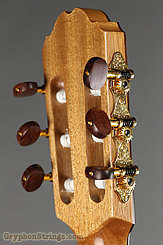 Kremona Guitar Fiesta TLR NEW Image 6