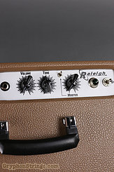 Carr Amplifier Raleigh  1x10 Combo, Cocoa NEW Image 3