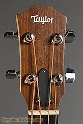 Taylor Bass GS Mini-e Maple Bass NEW Image 7