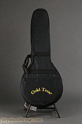 c. 2019 Gold Tone Banjo IT-19 Image 11