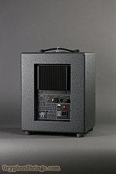 2011 Schertler Amplifier Side 150 + 30 Watt Biamplified Loudspeaker Image 2