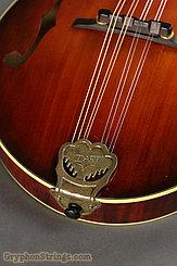 1993 Dave Dart Mandolin F-5 Image 6