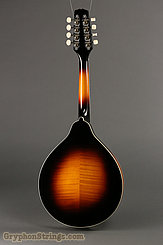 Kentucky Mandolin KM-150 NEW Image 4