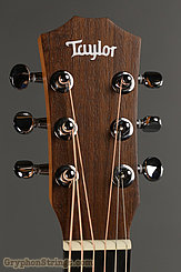 Taylor Guitar Baby Taylor NEW Image 5