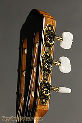 New World Guitar Player 650 Fingerstyle, Spruce NEW Image 6