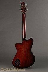 2017 Scott Walker Guitar Chimera Custom Image 4