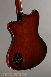 2017 Scott Walker Guitar Chimera Custom Image 6