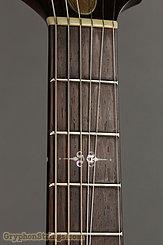 2017 Scott Walker Guitar Chimera Custom Image 9