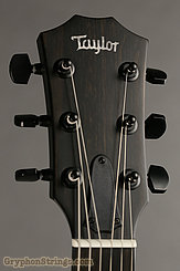 Taylor Guitar T5z Classic Rosewood NEW Image 6