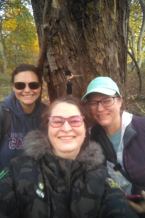Oct30 Caching with icnr.jpg