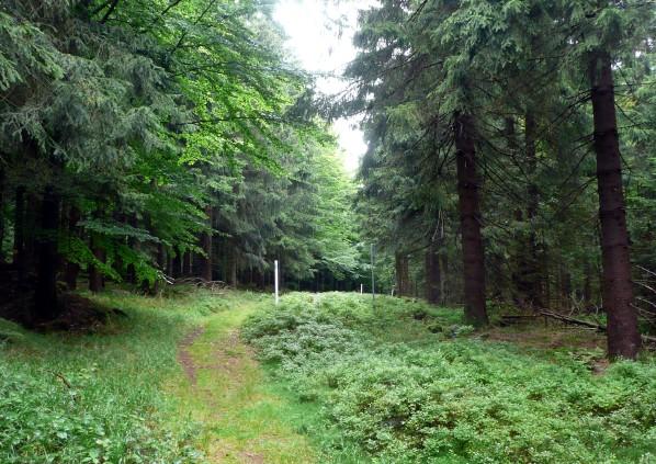 Hranice směrem k Entenbühlu
