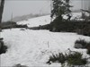 Winter on Plöckenstein