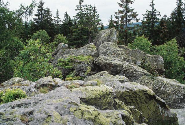 Klostermannova skala