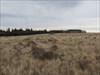 Parking on the prairie
