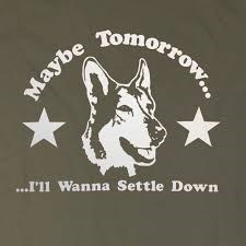 Maybe tomorrow theme from the tv series the littlest hobo by terry.