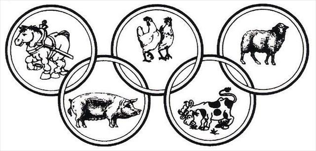bauernolympiade
