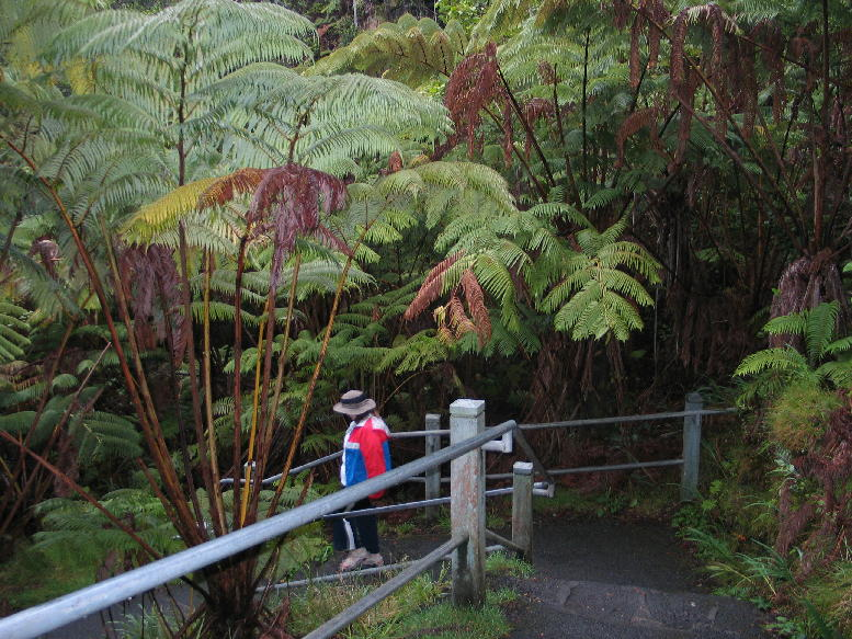 Lava Tube Trail