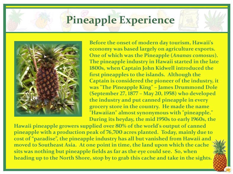 Pineapple Experience-history