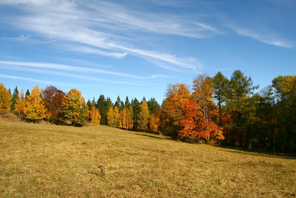 Podzim na Berglu