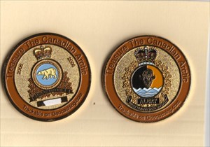 Arctic both sides coin