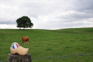 Flying Dutchman's Clog in the hills from Limburg