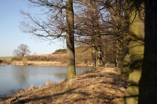 Na hrázi Panského rybníka