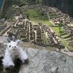 Goat Haunt