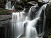 Amicalola falls log image