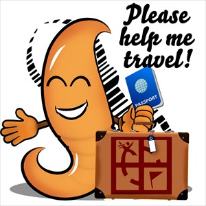 Please Help Me Travel!