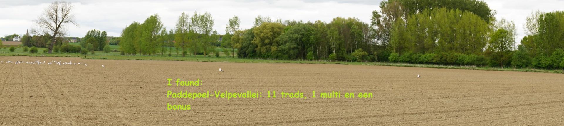 Paddepoel-Velpevallei