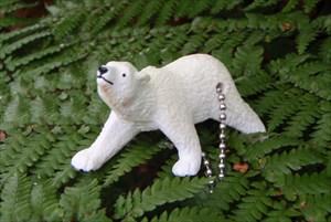 Polar Bear TB