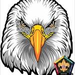HawkLawless1