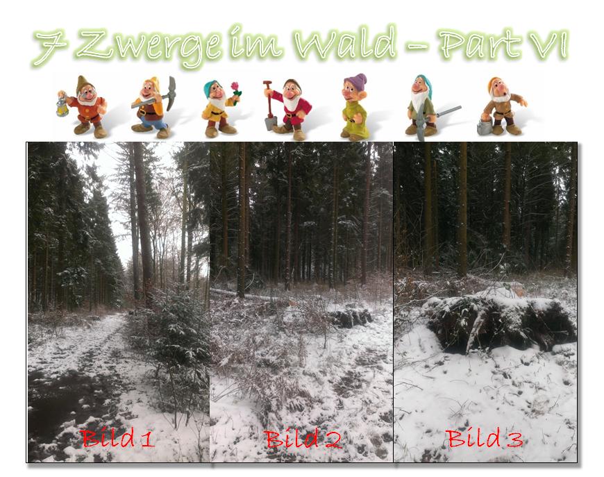 7 Zwerge im Wald - Part VI