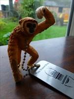 Chris, The Cheeky Monkey