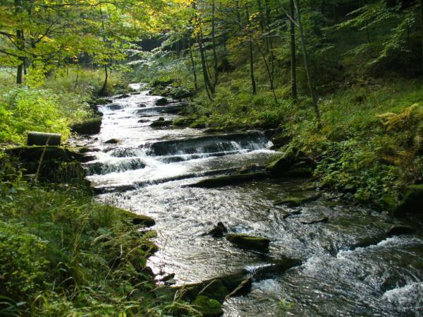 Bystrý potok