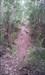 Trilho 10 log image