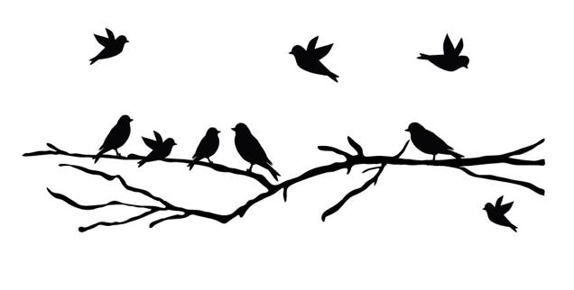 gc6rh1b ofze2016 vogeltje pierewiet wherigo cache in