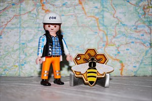 Chaos Travel Bee