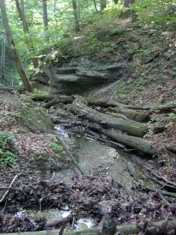 der Ochsengraben