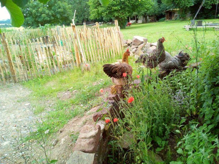 Hühner im Garten bei den Ziegen