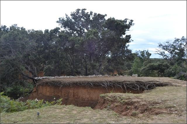 SOIL EROSION ON THE ISLAND OF RAB
