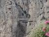 El Chorro XXVIII log image