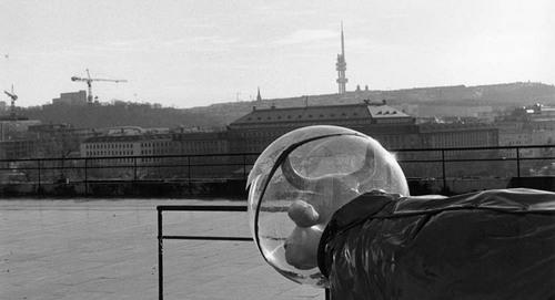 Výhled na Prahu / Prague view