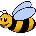 1Bumblebee