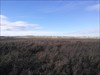 Nose Hill View