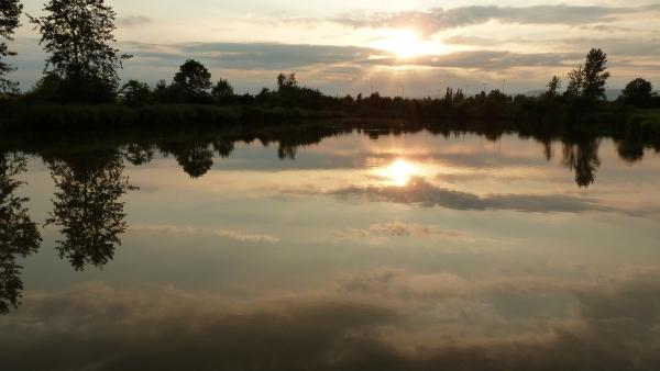 pond sunset - photo by zelvik