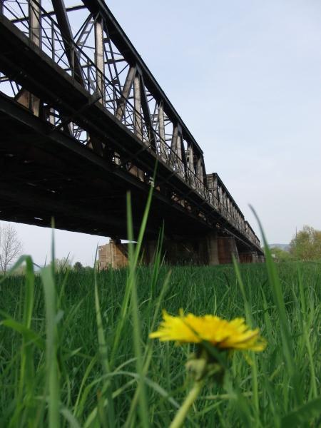 Zugige Brücke