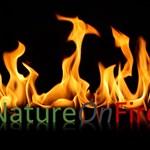 NatureOnFire
